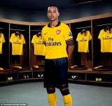 New 2013 Arsenal Away Jersey